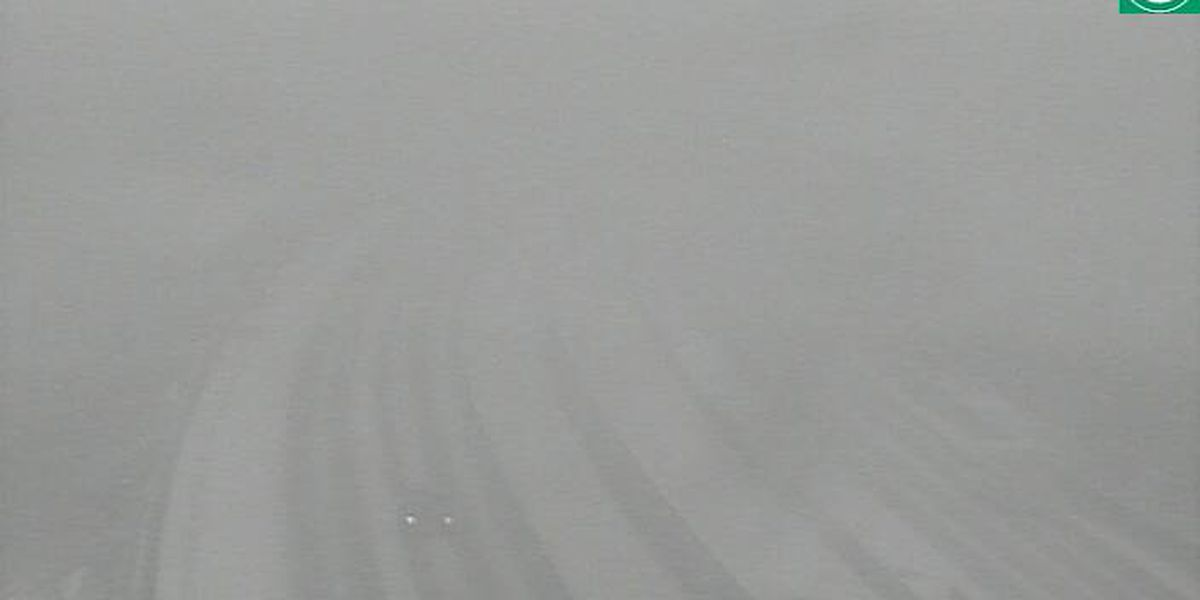 Heavy snow blankets NE Ohio road causing low visibility