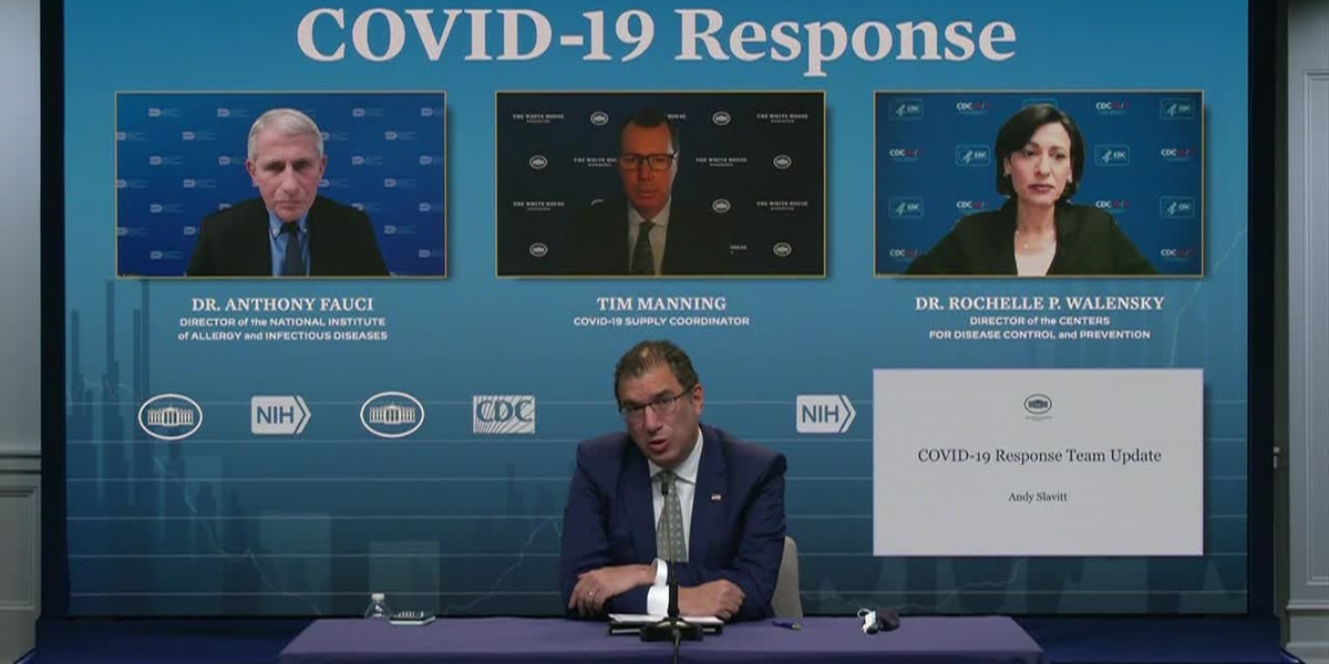 LIVE: White House COVID response team briefing