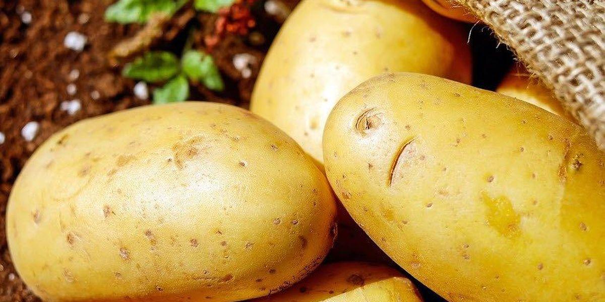 Recipe: Potato curry for National Potato month