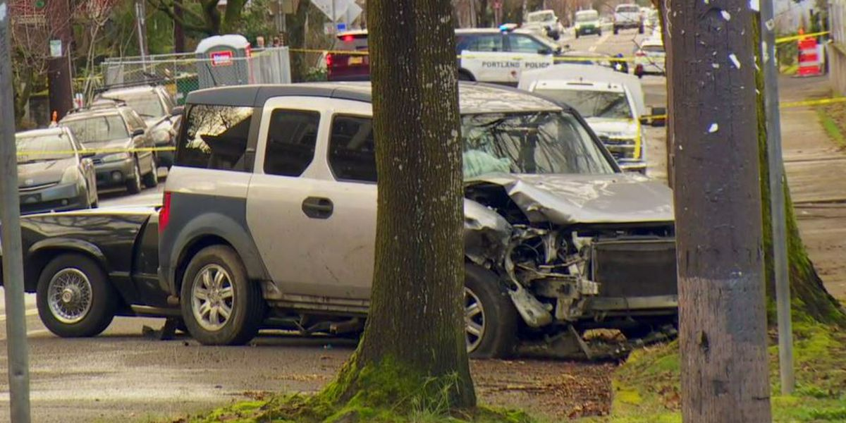 Elderly woman killed, 5 others hurt in Portland car rampage