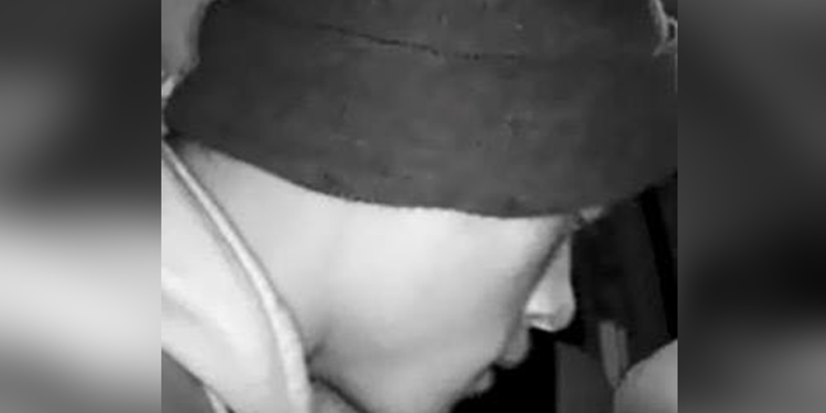 Norwood police trying to ID pair suspected in car break-ins