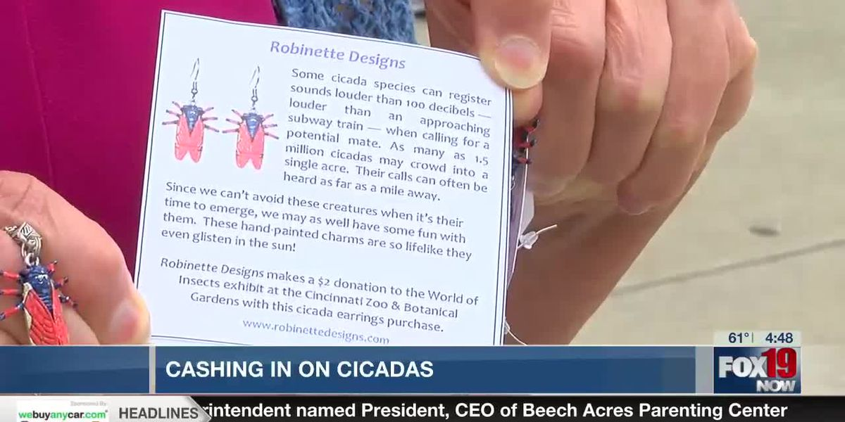 Jewelry designer turns cicadas into business opportunity