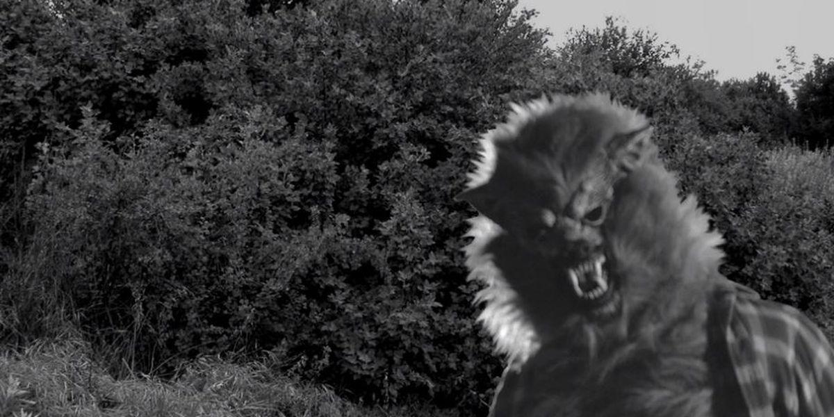 'The Werewolf of Defiance' is an Ohio local legend that still haunts (video)