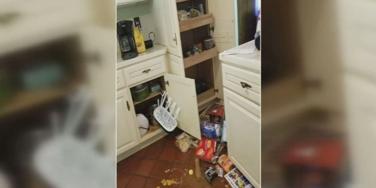 Bear breaks into home, mother and daughter run