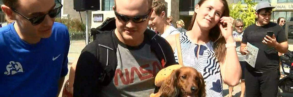 Oktoberfest Zinzinnati Running of the Wieners held downtown