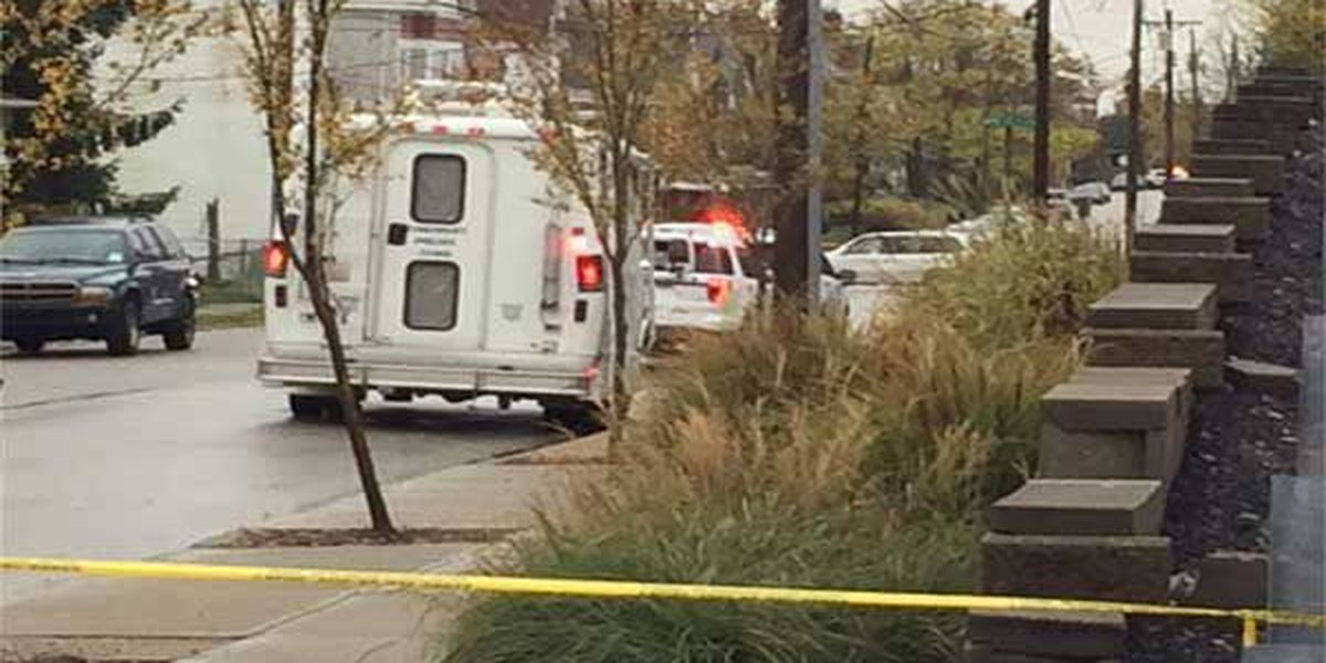 Police investigate fatal hit-skip in East Price Hill