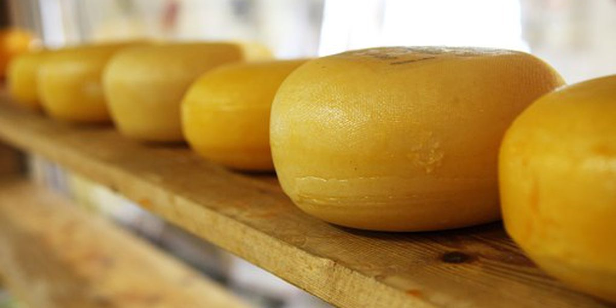 Ohio cheese wins US Championship Cheese Contest