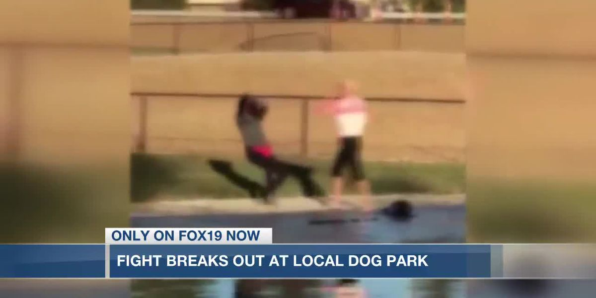 Fight breaks out at Fairfield dog park