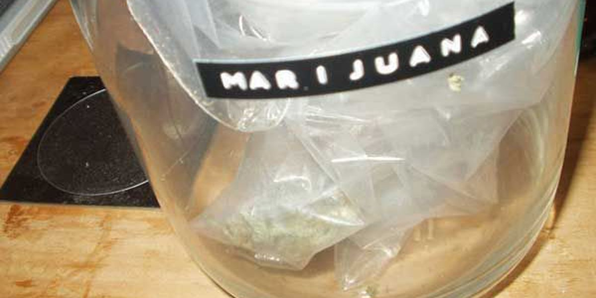 Police: Woman attacks 2 people after dog eats her marijuana