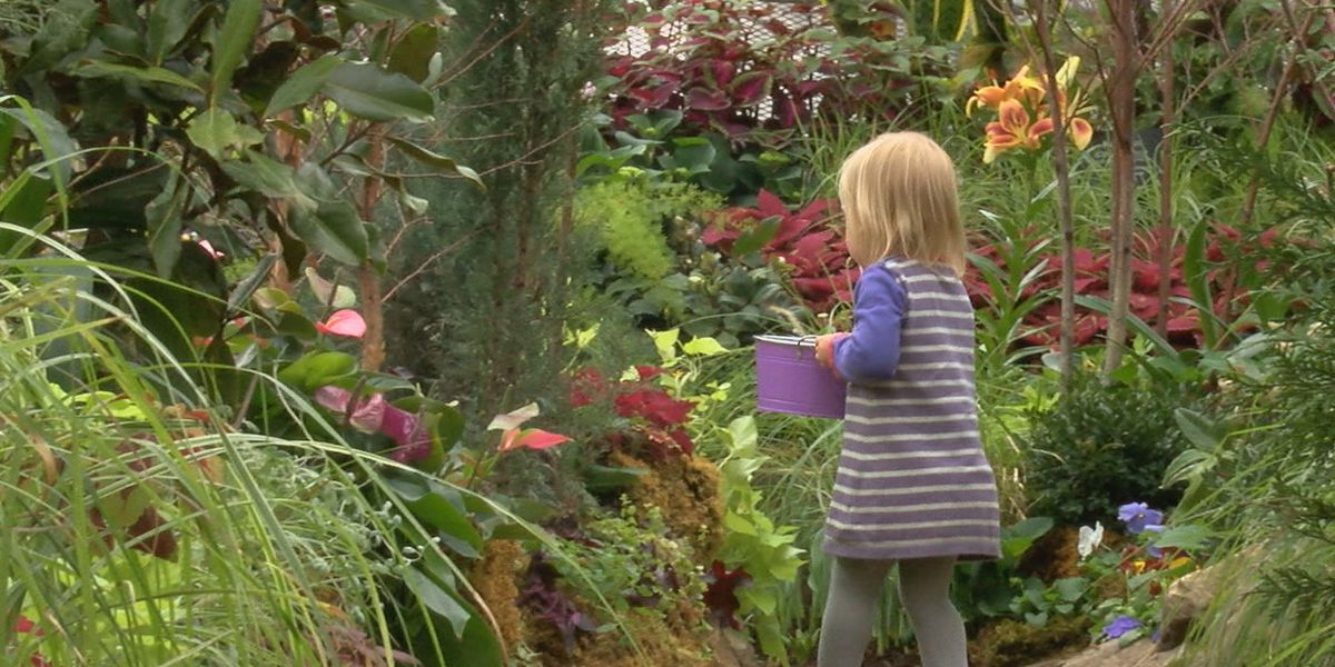 Bloom & Grow begins Saturday at Krohn Conservatory