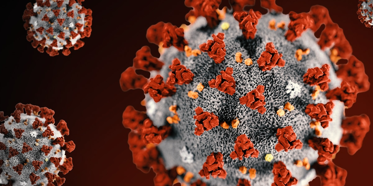 Coronavirus Vaccine Trials Reportedly Beginning in United States
