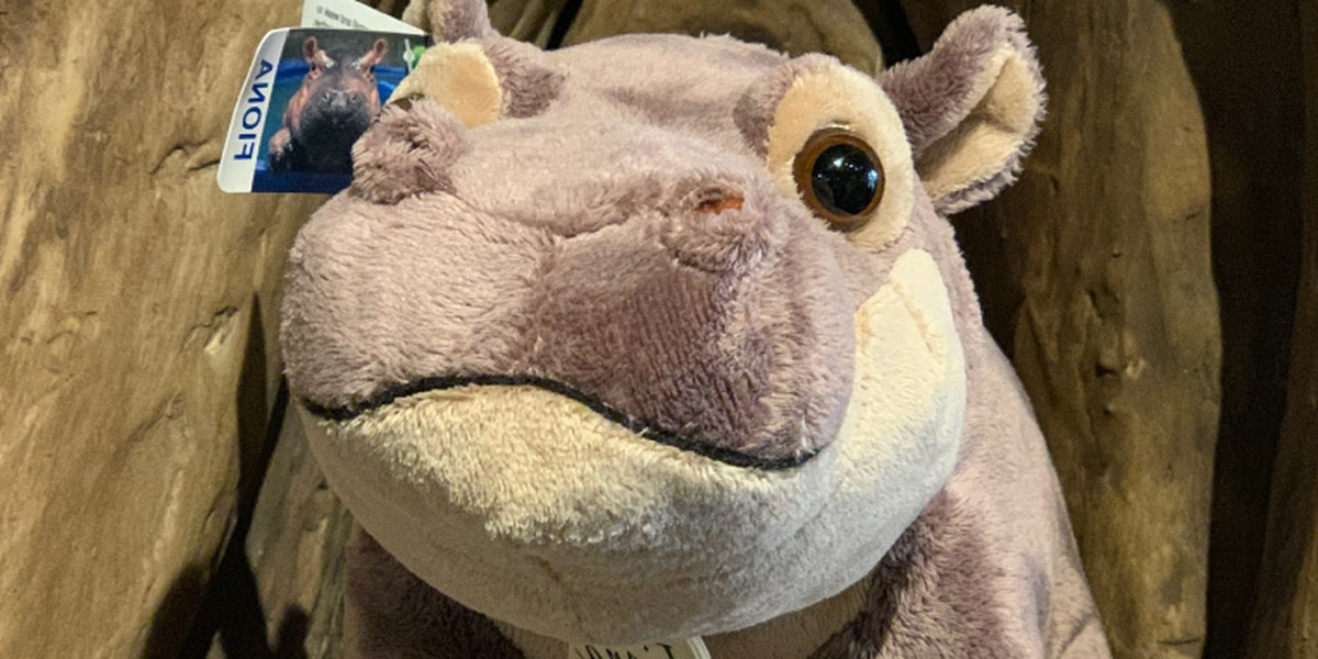 Holiday gifts for the Fiona lover in your life