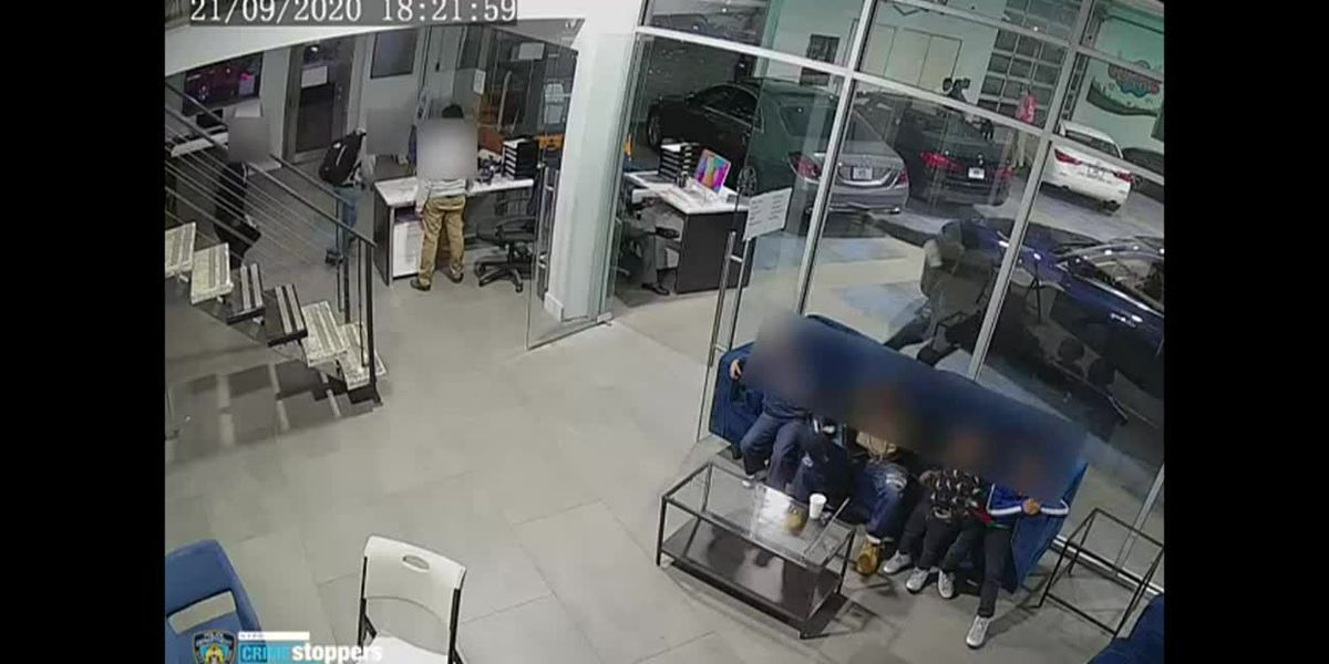 RAW: Father protects kids when gunfire erupts at NYC car dealership