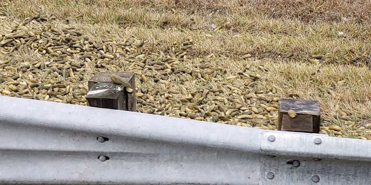 No big dill: ODOT crews clean up piles of pickles on I-75