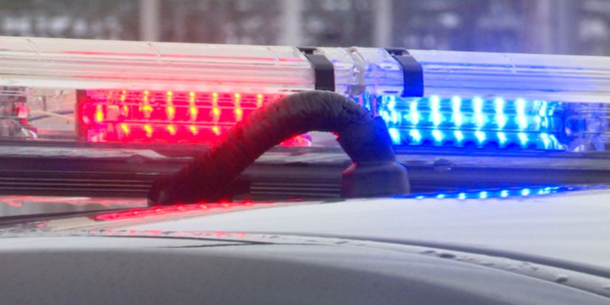 Woman hits officer in attempted getaway following Meijer theft, complaint says