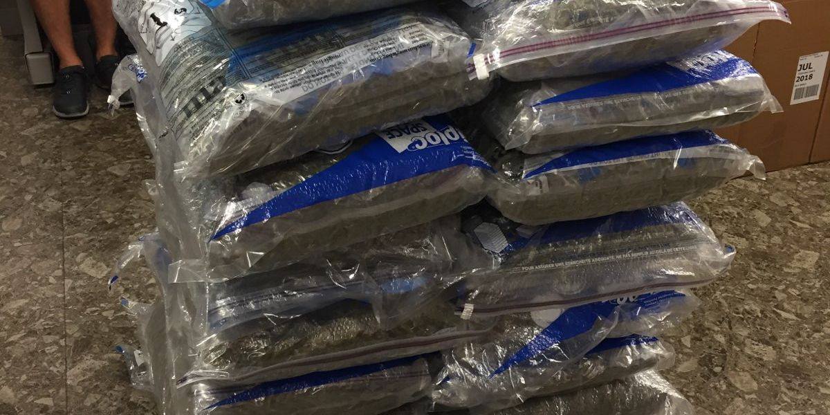 168 lbs. of marijuana recovered during SWAT situation