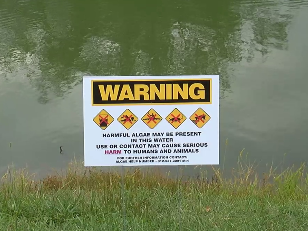Indiana officials warn people, pets to stay out of lakes with toxic-blue green algae