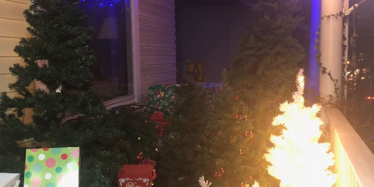 Community donates Christmas trees to those in need