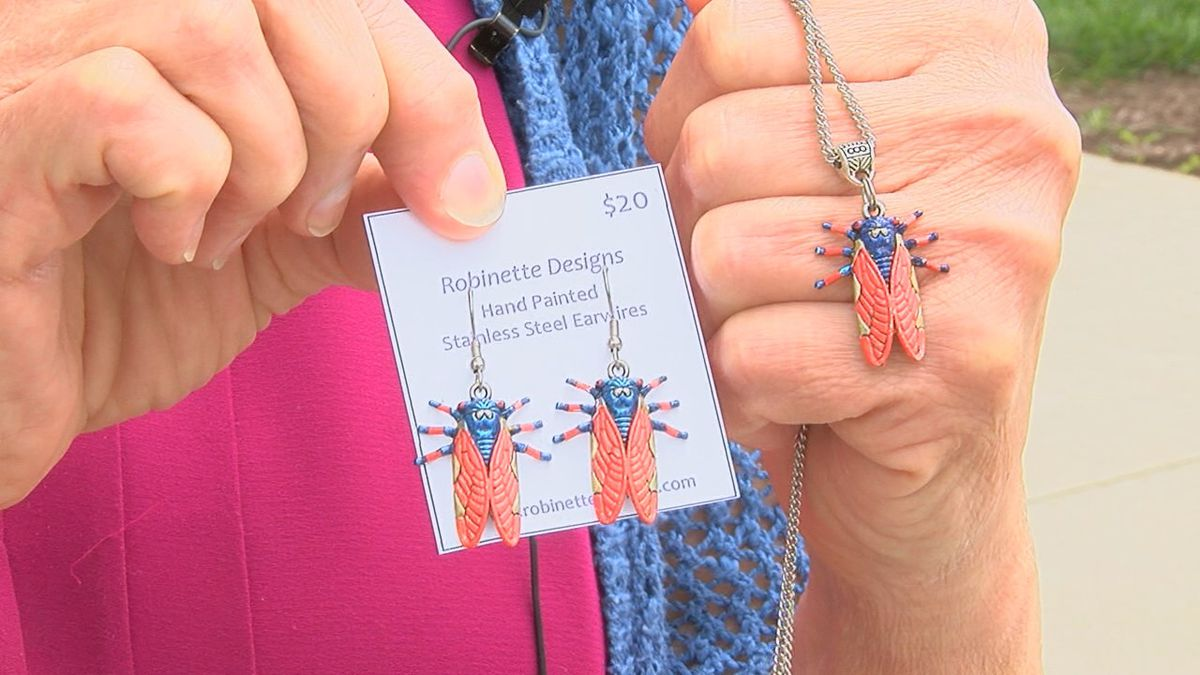 Cashing in on cicadas: Jewelry designer making most of rare opportunity