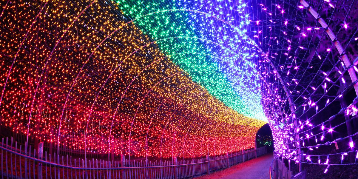 PNC Festival of Lights opens at Cincinnati Zoo this weekend