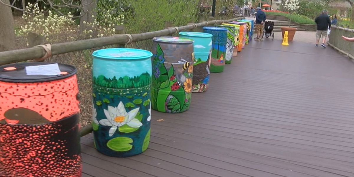 Cincinnati Zoo using rain barrels to raise awareness for stormwater conservation