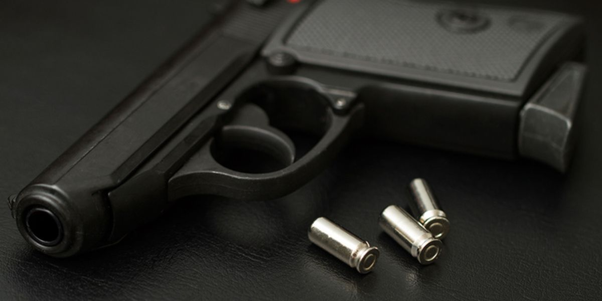Governor signs KY bill into law allowing concealed carry without permit