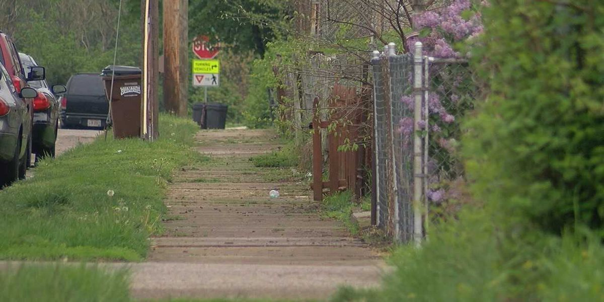 Pit bull sends man to hospital, kills his dog in Middletown attack