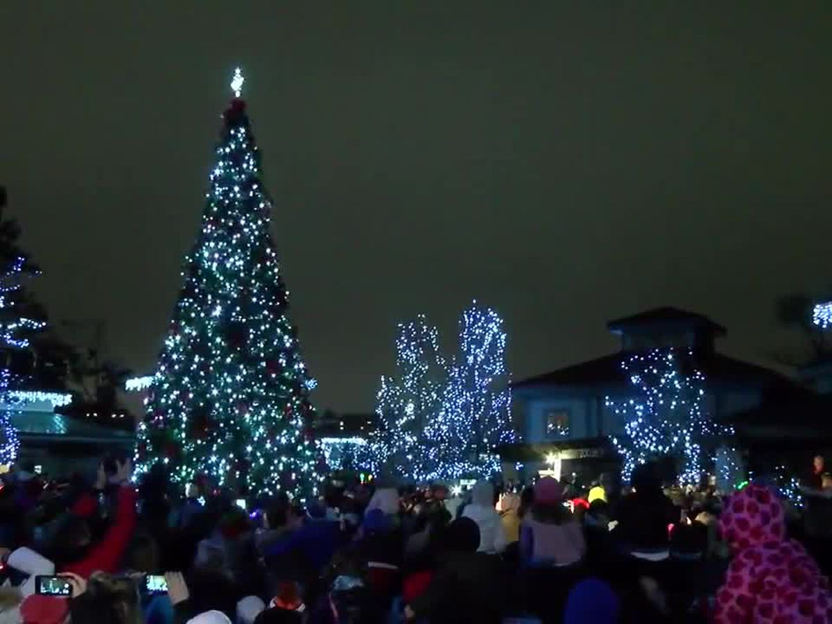 More dates added for the Cincinnati Zoo's Festival of Lights