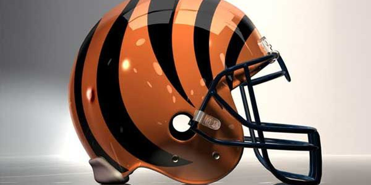 Bengals Pro Shop hiring for rest of 2015