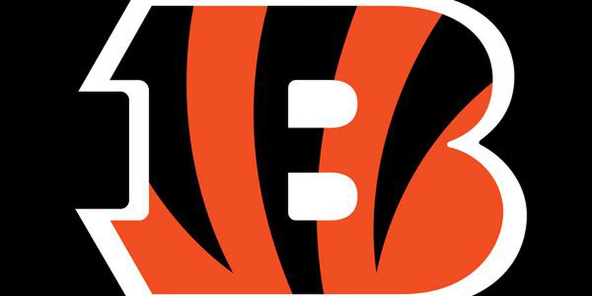 Gov. Mike DeWine says 3,000 fans may attend Bengals, Browns games