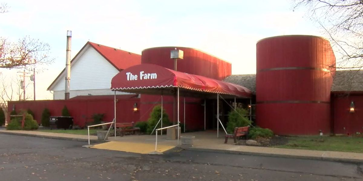 Owner hopes to save 'The Farm' from auction block