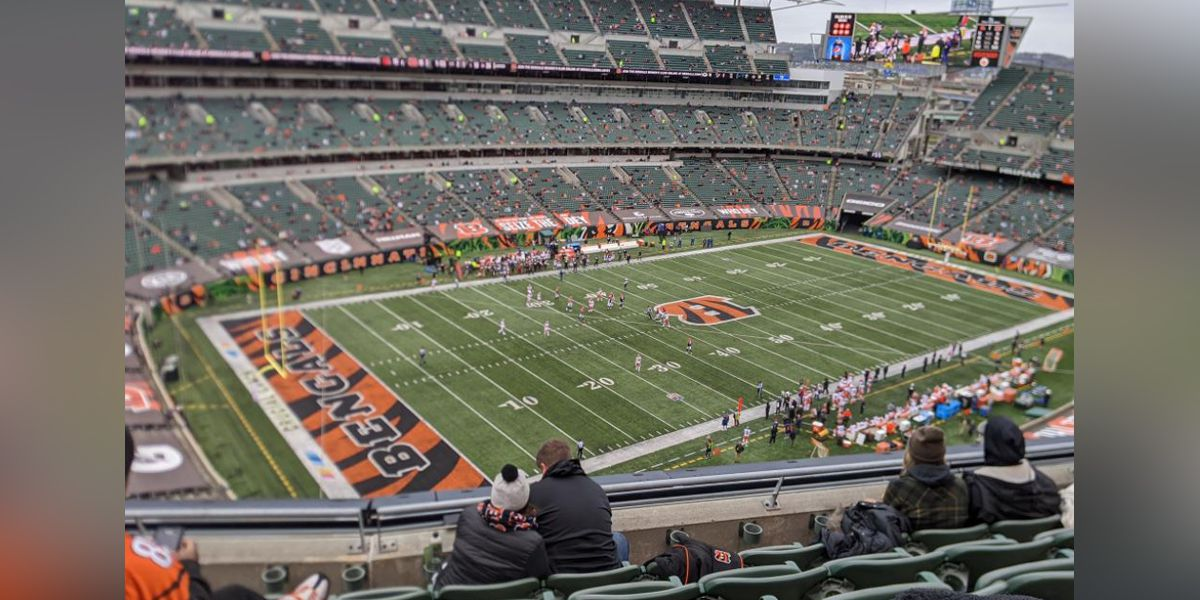 'Next year we will earn our stripes,' Bengals president says