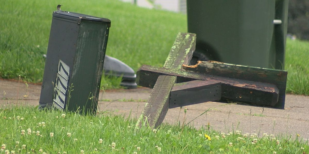 VIDEO: Mailbox vandals caught in the act