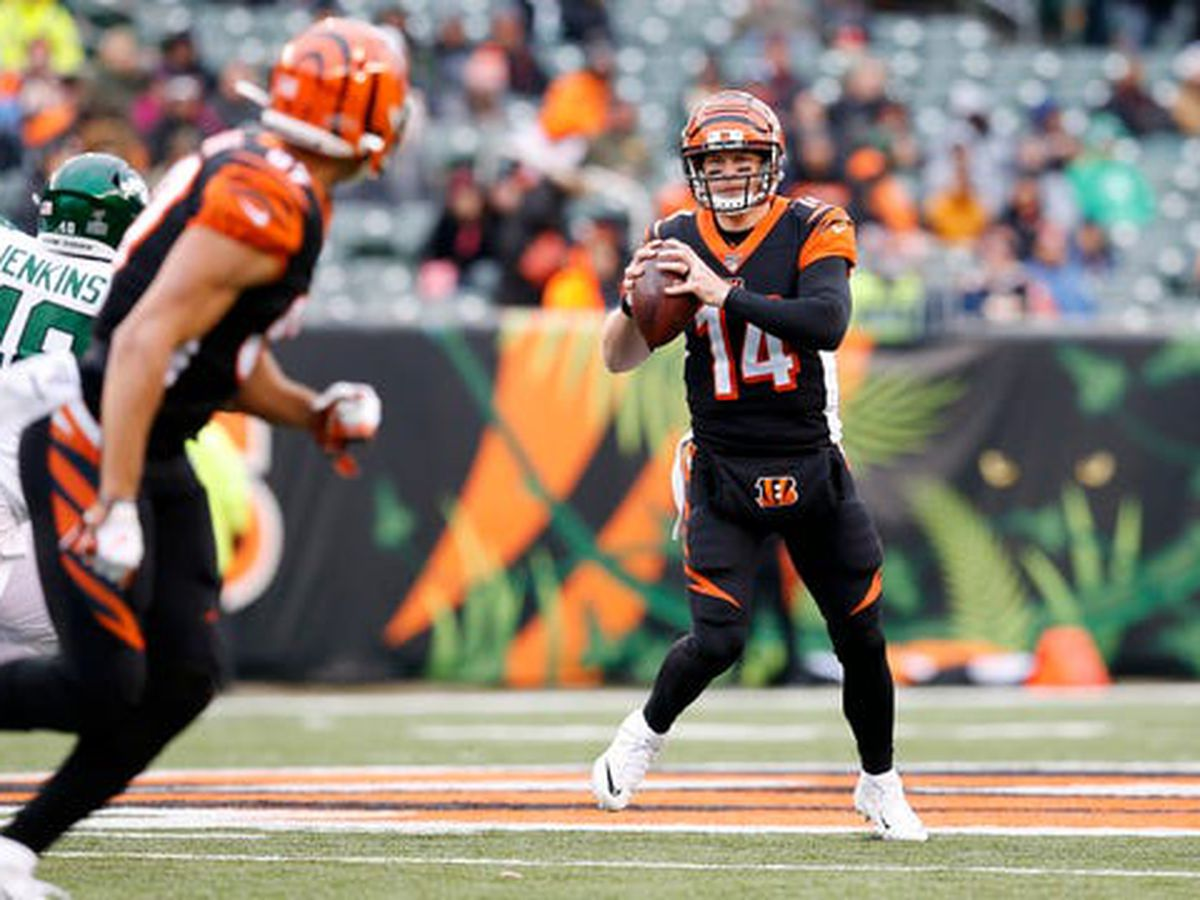 Andy Dalton returns as starter and leads Cincinnati Bengals to first win