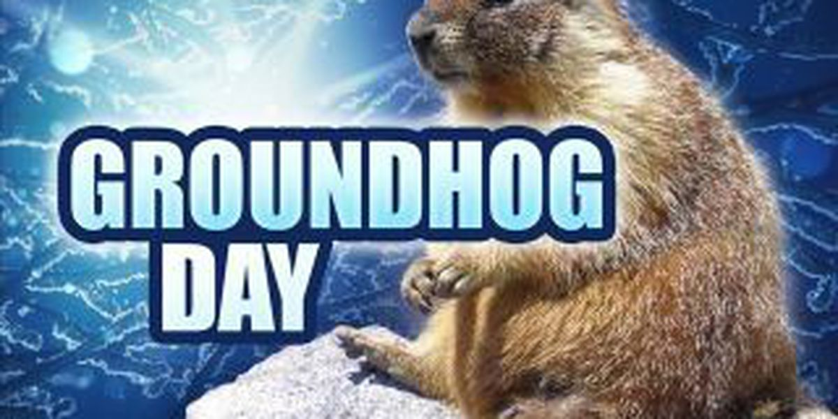 Groundhog predicts spring to come sooner