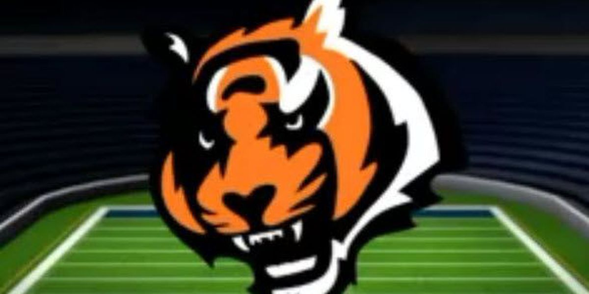 Bengals Beat 49ers Clinch Playoff Berth