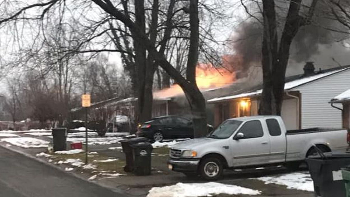 Firefighters rescue dog from Loveland house fire