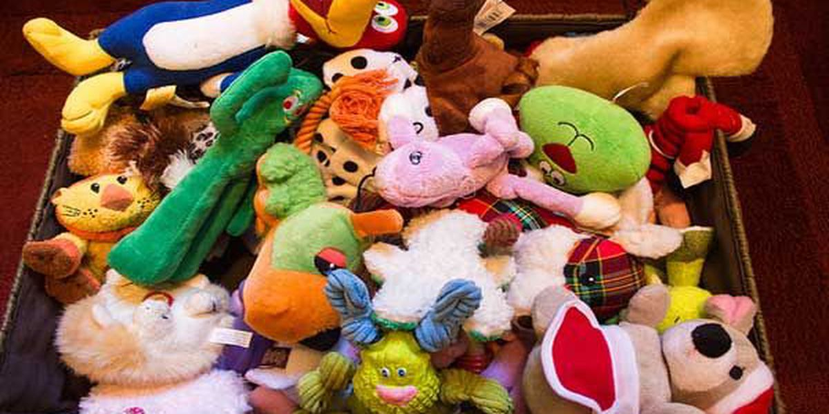 List: Toys for Tots events