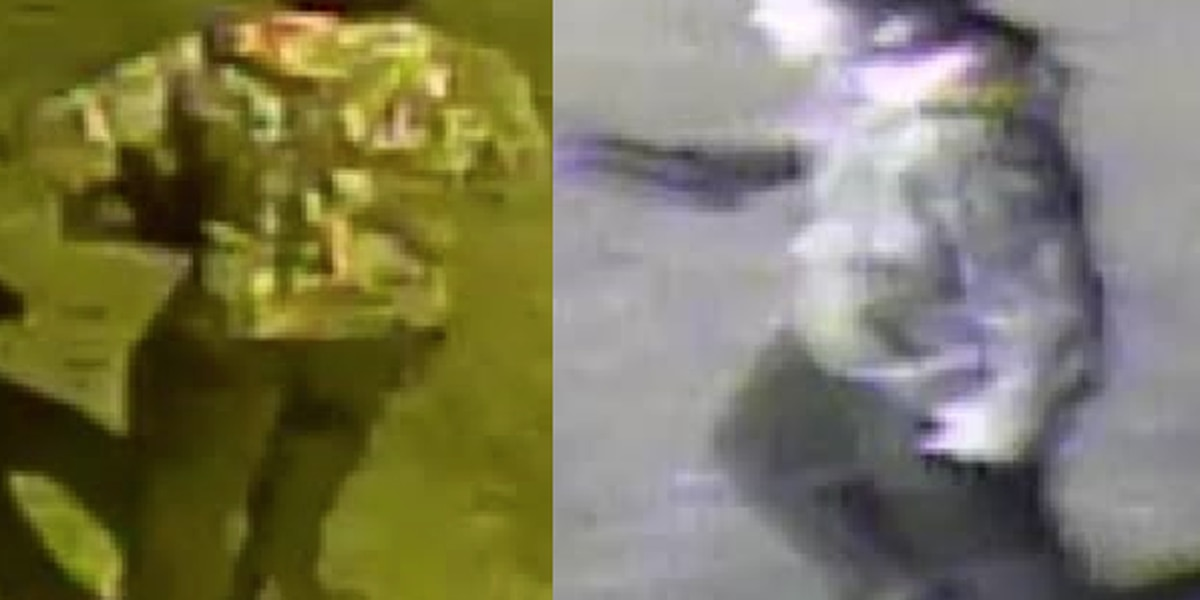 Person wanted for questioning in Mainstrasse-area burglaries
