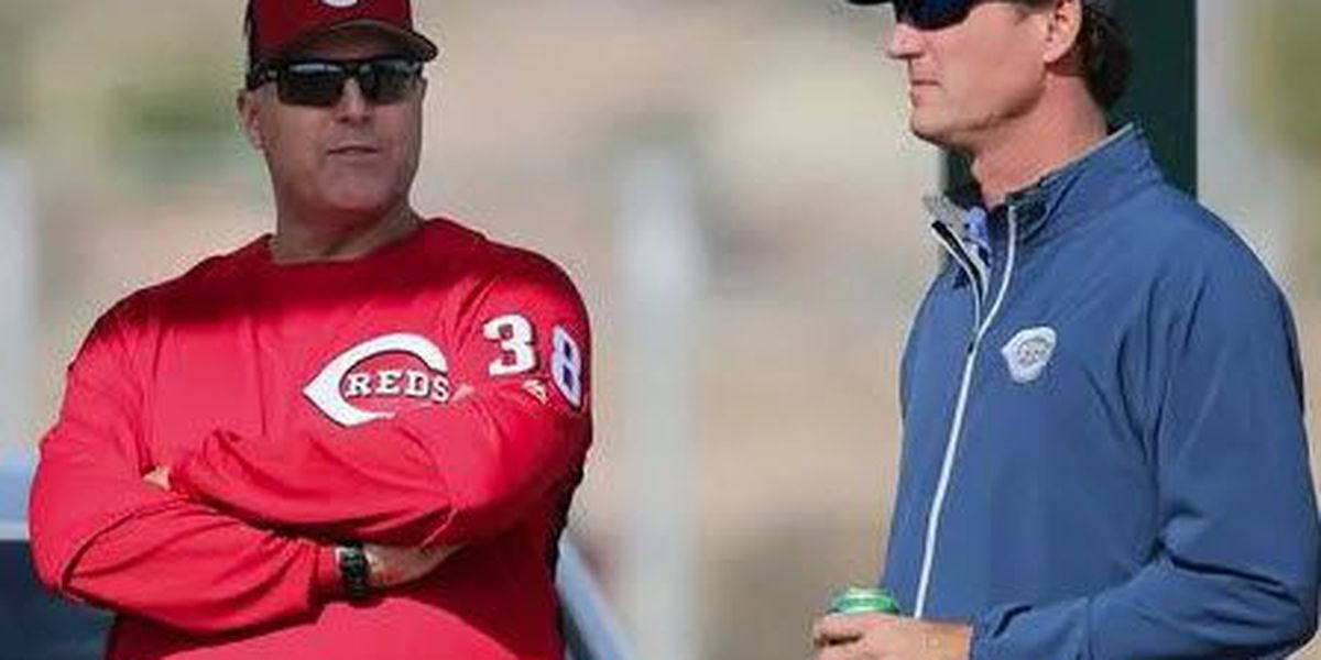 Reds GM calls this season 'an organizational disappointment'