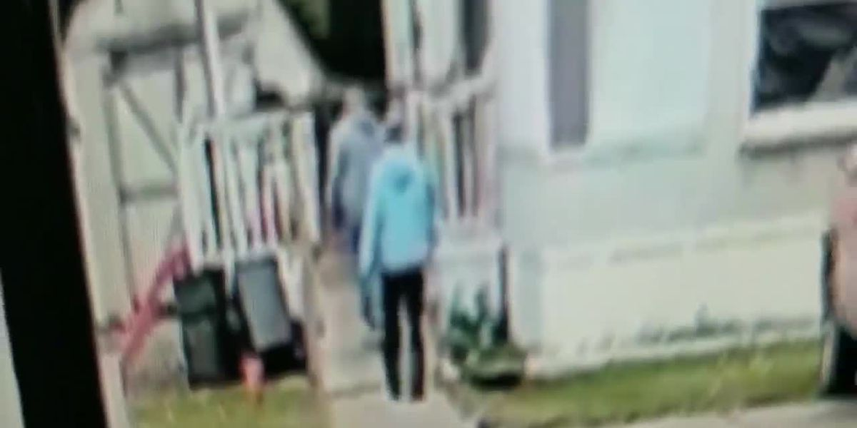 Family believes men caught on video releasing dog may have played part in animal's death