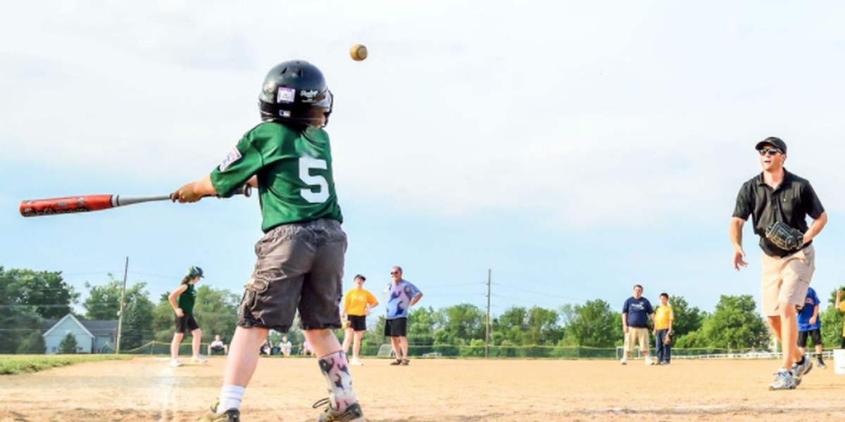 Mason nonprofit applying for grant to create accessible baseball fields; vote here