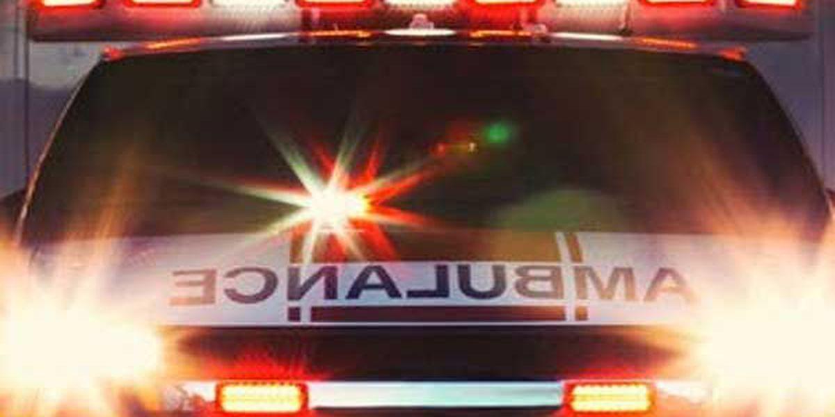 Metro bus crashes into pole, 2 hospitalized
