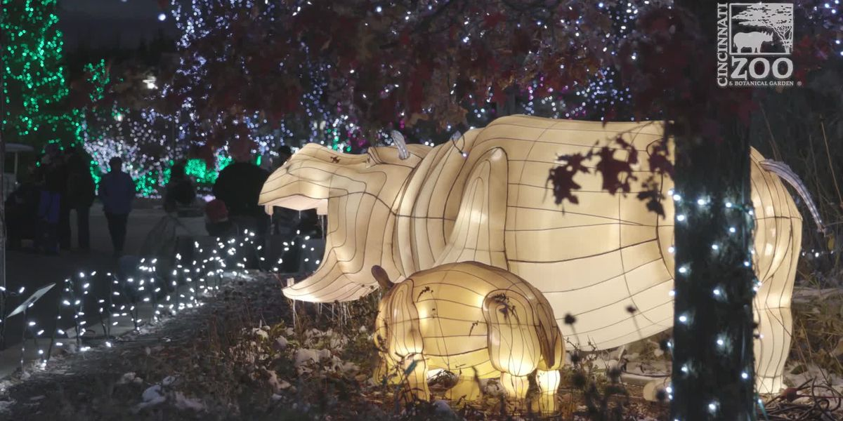 New features at Cincinnati Zoo's PNC Festival of Lights