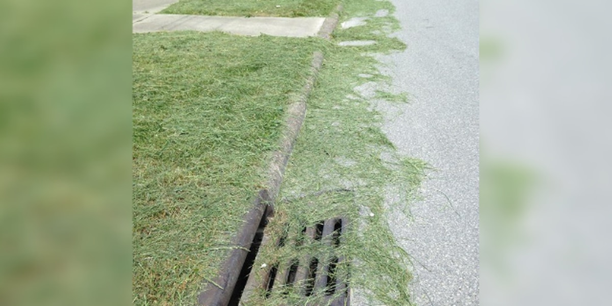Ohio police remind residents to keep the grass clippings out of the road