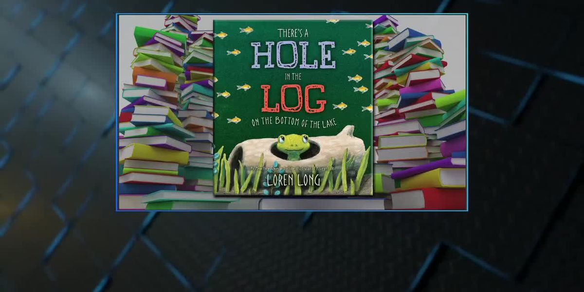 New Childrens Book Hole in the Long