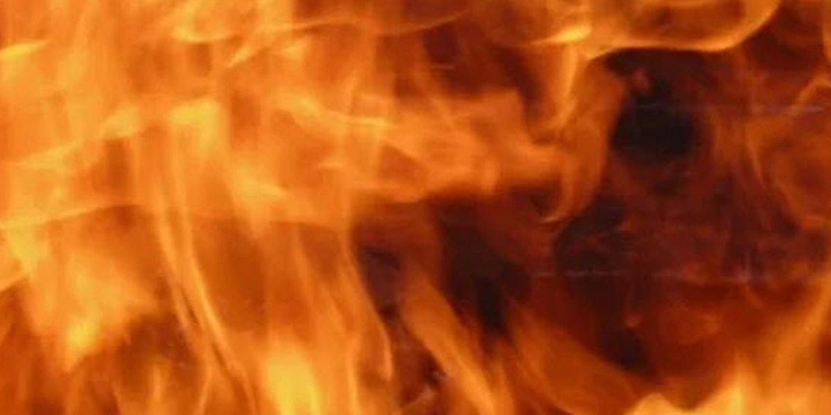 2 displaced in Butler County house fire