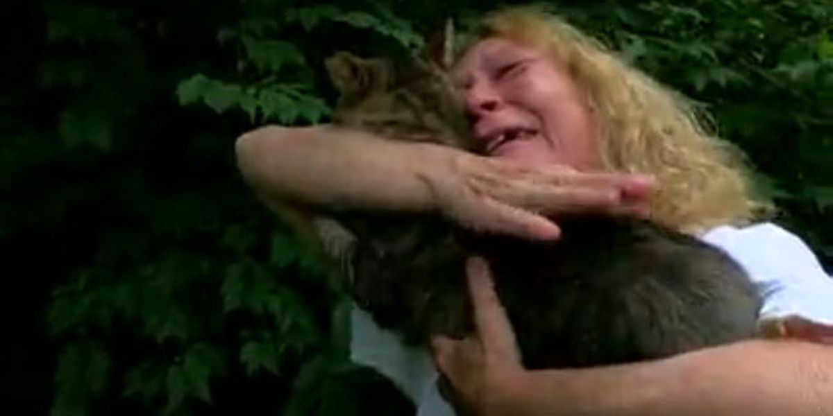 Cincinnati woman reunited with 2 cats, 1 still missing after vehicle crashes through home