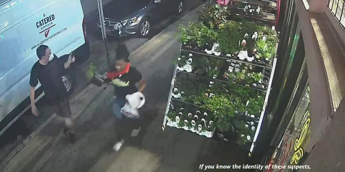 VIDEO: Vandalism at Woods Hardware (2)
