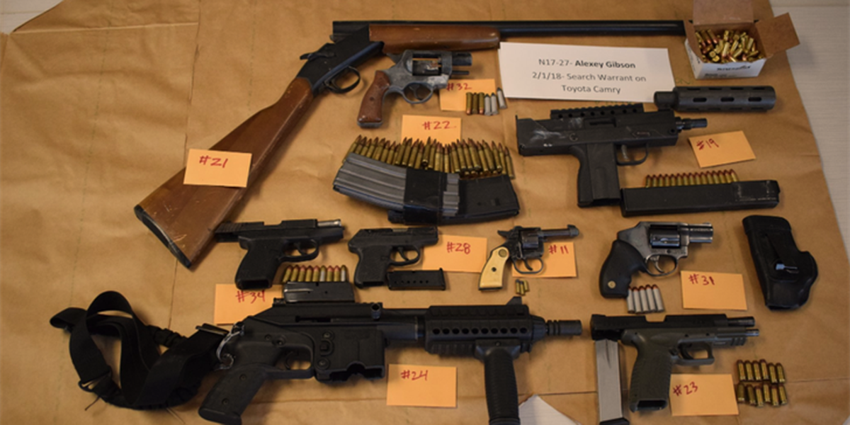 Drugs, more than 100 firearms seized during area drug bust